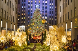 Jolliest Christmas Trees in NYC